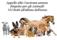 DIVIETO ACCENSIONE, LANCIO E SPARO DI MATERIALE PIROTECNICO ED ALTRO
